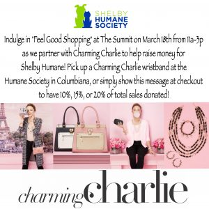 Charming Charlie Event Flyer